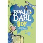 Boy: Tales of Childhood (Penguin)
