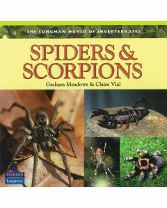 Longman World of Invertebrates: Spiders & Scorpions