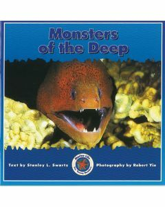 Marine Life: Monsters of the Deep
