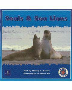 Marine Life: Seals & Sea Lions