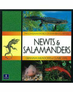 Longman World of Amphibians & Reptiles: Newts & Salamanders