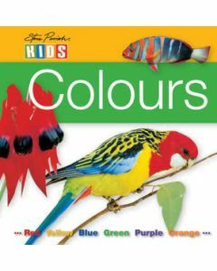 Board Book: Colours