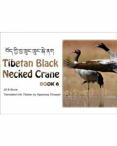 Book 6: Tibetan Black Necked Crane in English & Tibetan
