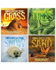 Camouflage Books 4 Pack