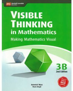 Visible Thinking in Mathematics 3B (2nd edition)