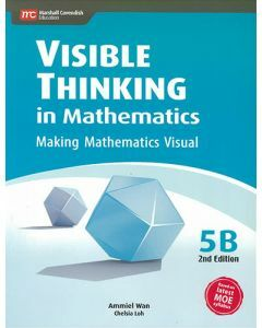Visible Thinking in Mathematics 5B (2nd edition)