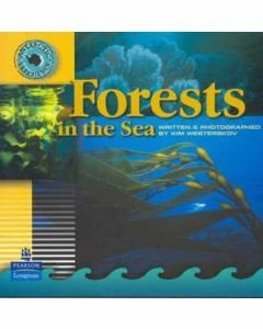 Antarctic Experience: Forests in the Sea