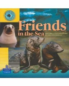 Antarctic Experience: Friends in the Sea