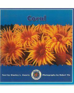 Marine Life: Coral