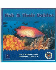 Marine Life : Fish & Their Babies