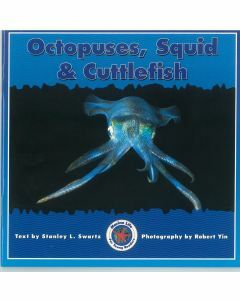 Marine Life: Octopuses, Squid & Cuttlefish