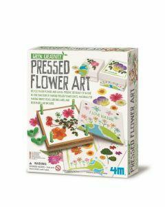 Pressed Flower Art (Ages 5+)