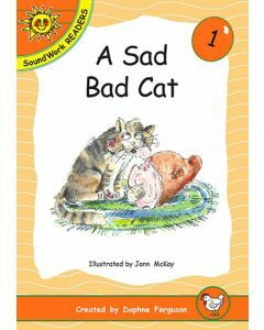 01. A Sad Bad Cat