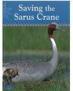 Saving the Sarus Crane