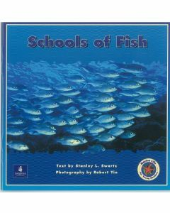 Marine Life : Schools of Fish