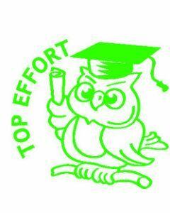 Top Effort Owl (ST1202)