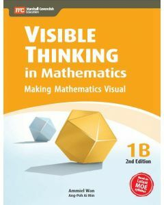 Visible Thinking in Mathematics 1B (2nd edition)