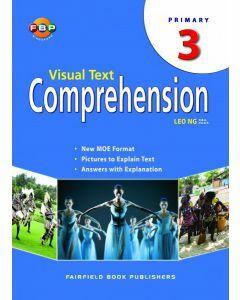Visual Text Comprehension 3