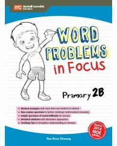 Word Problems in Focus 2B