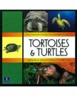 Longman World of Amphibians & Reptiles: Tortoises & Turtles