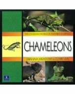 Longman World of Amphibians & Reptiles: Chameleons