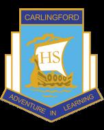 Carlingford High School Year 12 2020