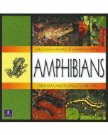 Longman World of Amphibians & Reptiles: Amphibians
