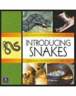 Longman World of Amphibians & Reptiles: Introducing Snakes